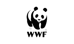 wwf-speak-talk-communicate-translations-traducciones-2